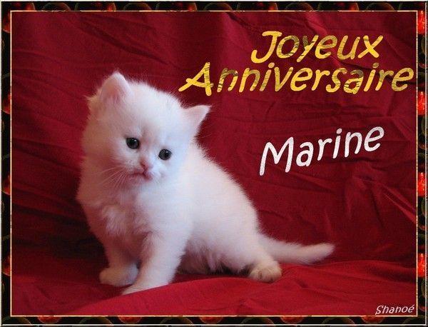 JOYEUX ANNIVERSAIRE MARINE 0a0528f0
